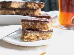 Dark Chocolate & Peanut Butter Squares (no bake!)